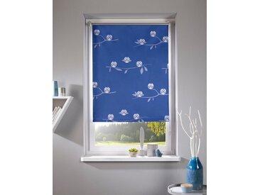 Home affaire Seitenzugrollo »Eule«, verdunkelnd, ohne Bohren, freihängend, Hitzeschutz, blau, blau