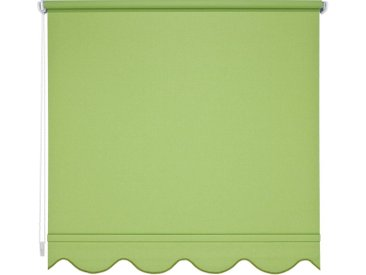 Liedeco Seitenzugrollo, Lichtschutz, mit Bohren, Volantrollo - Volant Klassik, Fixmaß, grün, grün