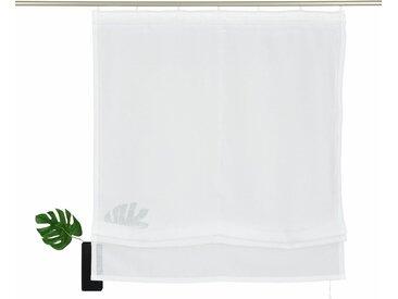 my home Raffrollo »Regina«, mit Klettband, weiß, Klettband, transparent, weiß