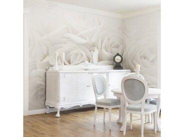 Bilderwelten Vliestapete Breit »Weiße Rosen«, weiß, 320x480 cm, Weiß