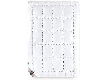 SEI Design Baumwollbettdecke, »SWAN DE LUXE«, leicht, Füllung: 100% Microfaser, Bezug: 100% Baumwolle, (1-tlg)