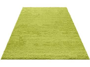 my home Hochflor-Teppich »Bodrum«, rechteckig, Höhe 30 mm, grün, 30 mm, grün