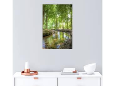 Posterlounge Wandbild - Manfred Hartmann »Bach im Wald«, grün, Holzbild, 120 x 180 cm, grün