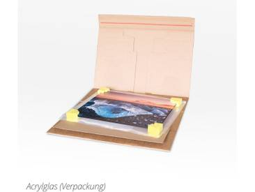 Posterlounge Wandbild - Albert Cagnef »PONYO«, bunt, Acrylglas, 120 x 160 cm, bunt