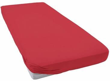 Schlafgut Spannbettlaken »Jersey-Elasthan«, besonders dehnbar, rot, Jersey-Elasthan, kirschrot