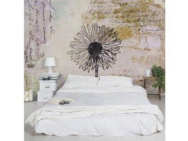 Bilderwelten Vliestapete Blumen Breit »Shabby Pusteblume«, natur, 255x384 cm, Naturfarben