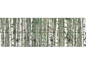Artland Wandgarderobe »Jule: Birkenwald - Bäume«, weiß, 30 x 90 x 2,8 cm, Weiß