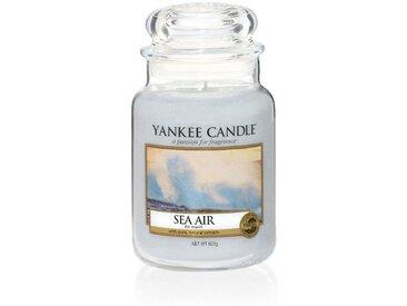 Yankee Candle Duftkerze »Classic Housewarmer Groß Sea Air«