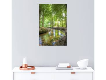 Posterlounge Wandbild - Manfred Hartmann »Bach im Wald«, grün, Holzbild, 60 x 90 cm, grün