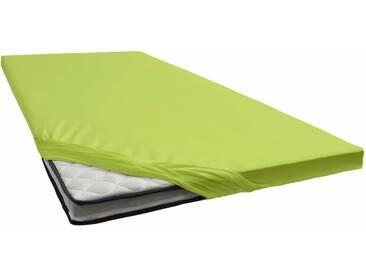 Janine Spannbettlaken »Jersey-Elasthan«, für Topper, grün, Jersey-Elasthan, grün