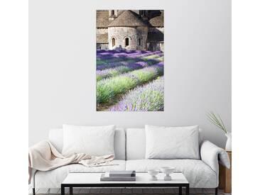 Posterlounge Wandbild - Matteo Colombo »Senanque Abtei und Lavendel, Provence«, bunt, Alu-Dibond, 20 x 30 cm, bunt