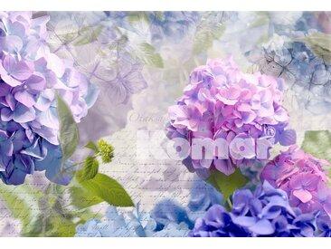 Komar Fototapete »Blüten«