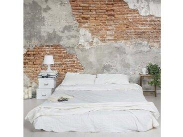 Bilderwelten Vliestapete Breit »Shabby Backstein Wand«, grau, 255x384 cm, Grau