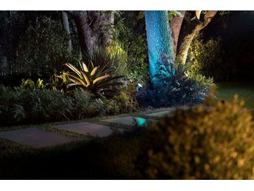Philips Hue LED Gartenstrahler »Lily XL«, 1-flammig