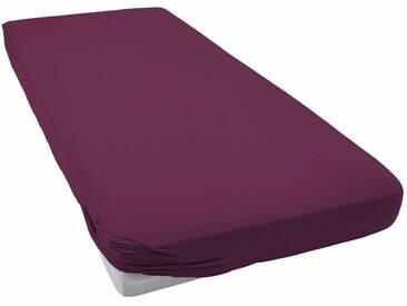 Schlafgut Spannbettlaken »Frottee-Stretch«, flauschig weich, lila, Microfaser-Frottee, beere