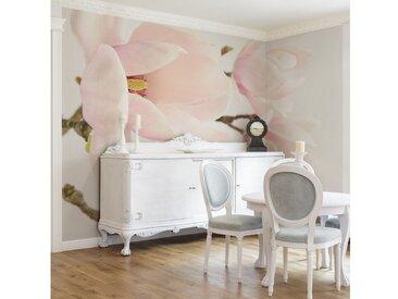 Bilderwelten Vliestapete - Blumentapete Royal Magnolia Fototapete Breit »Royal Magnolia«, rosa, 320x480 cm, Pink