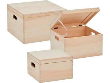 Zeller Present Zeller Aufbewahrungsboxen, 3-tlg., natur, Maße(B/T/H):(25/25/16)(B/T/H):(30/30/19), natur