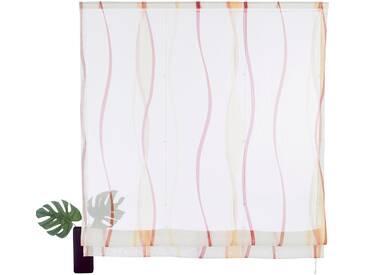 my home Raffrollo »Dimona«, mit Klettschiene, natur, Klettschiene, transparent, creme-terra
