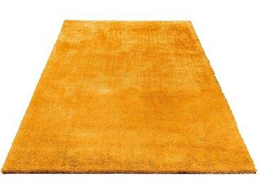 Bruno Banani Hochflor-Teppich »Dana«, rechteckig, Höhe 30 mm, Besonders weich durch Microfaser, gelb, 30 mm, gelb