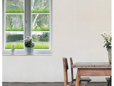 Bilderwelten Fenstersticker »Gras Set«, bunt, 60x111 cm, Farbig