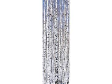 Artland Wandgarderobe »Axl_Images: Winterbirkenwald Wintergelassenheit«, blau, 140 x 45 x 2,8 cm, Blau