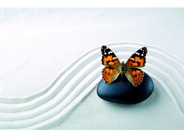 bella jolly JOLLYTHERM Packung: Heizkörperverkleidung »Schmetterling«, Flexi-Cover Magnetfolie 60 x 80 cm, bunt, 60 cm, bunt