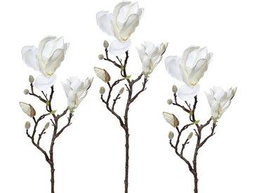 Kunstzweig »Magnolie« (3 Stück), Höhe 52 cm, weiß, weiß
