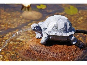 OASE Wasserspiel , Wasserspeier Schildkröte, grau, grau