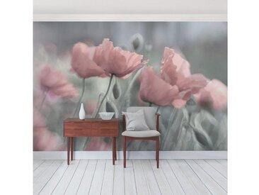 Bilderwelten Vliestapete Quer »Malerische Mohnblumen«, bunt, 190x288cm, Farbig