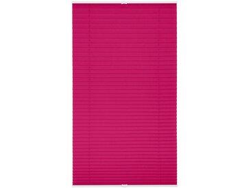 LICHTBLICK Plissee »Klemmfix«, Lichtschutz, ohne Bohren, verspannt, Faltenstore, rosa, fuchsia