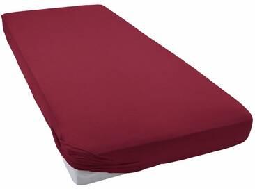 Schlafgut Spannbettlaken »Jersey-Elasthan«, besonders dehnbar, rot, Jersey-Elasthan, bordeaux