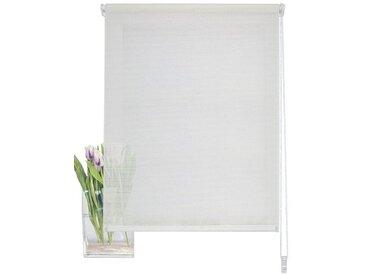 HOME WOHNIDEEN Seitenzugrollo »SIEGLINDE«, halbtransparent, ohne Bohren, weiß, wollweiß