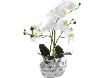 Kunstorchidee »Orchidee«, weiß, weiß