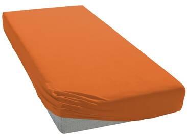 Bassetti Spannbettlaken »Jersey-Elasthan«, bügelfreie Qualität, orange, Jersey-Elasthan, apricot