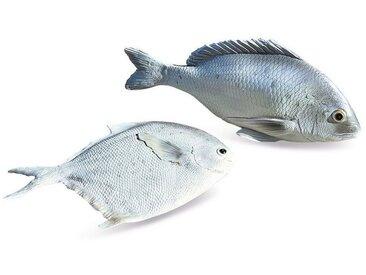 Loberon Fisch 2er Set »Maleko«, silberfarben, silber