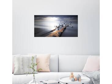 Posterlounge Wandbild - Dennis Siebert »Baum am Weststrand«, grau, Leinwandbild, 40 x 20 cm, grau