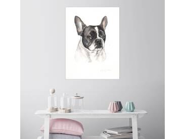 Posterlounge Wandbild - Lisa May Painting »Französische Bulldogge, schwarz-weiß«, weiß, Holzbild, 30 x 40 cm, weiß