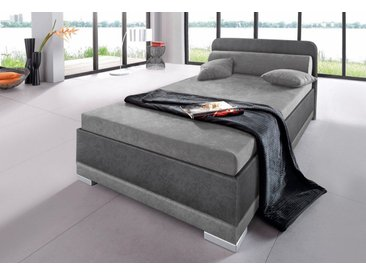 Maintal Polsterbett, Microvelours, Made in Germany, grau, Liegehöhe 42 cm, Festpolsterung, steinfarben-dunkelgrau