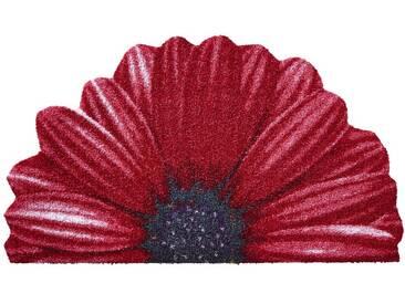 Salonloewe SALONLOEWE Fußmatte, rot, rot
