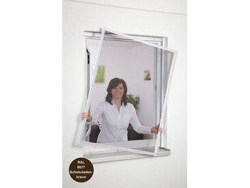 hecht international HECHT Insektenschutz-Fenster »Basic«, Bausatz BxH: 100x120 cm, braun, grau, Fenster, 100 cm x 120 cm, anthrazit
