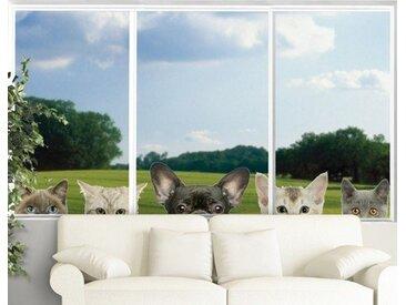 Bilderwelten Fenstersticker »Katzen mit Hundeblick«, weiß, 86x165 cm, Weiß