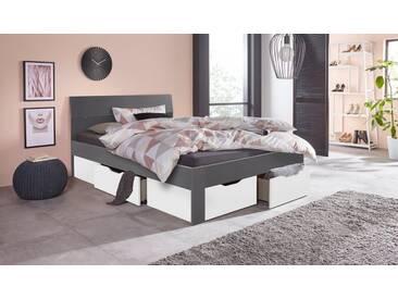rauch PACK´S Möbelwerke Stauraumbett »Flexx«, grau, graumetallic/weiß