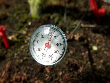 Vitavia VITAVIA Thermometer , Zur Kontrolle der Bodentemperatur