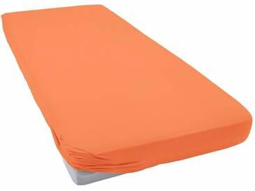 Schlafgut Spannbettlaken »Jersey-Elasthan«, besonders dehnbar, orange, Jersey-Elasthan, orange