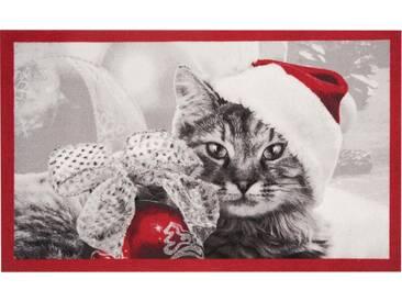 HANSE Home Fußmatte »Christmas Cat«, rechteckig, Höhe 7 mm, rot, 7 mm, rot-grau
