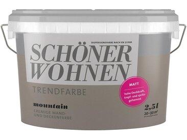 SCHÖNER WOHNEN-Kollektion SCHÖNER WOHNEN FARBE Farbe »Trendfarbe Mountain«, matt 2,5 l, grau, 2.5 l, Mountain