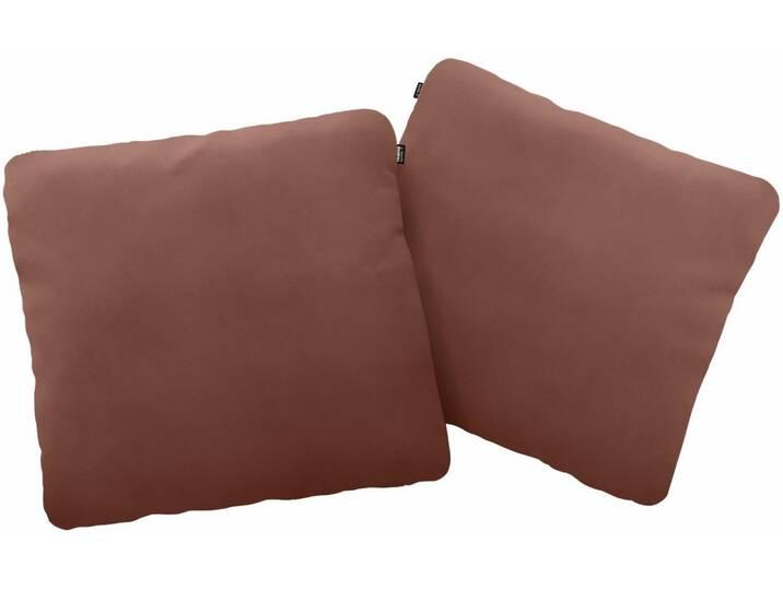 Hülsta Sofa hülsta sofa Polsterkissen »hs.480« wahlweise in Stoff oder Leder, in drei Größen, braun, 60/60 cm, signalbraun