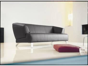 Rolf Benz Sofa 2 Sitzer oder 3 Sitzer Leder schwarz »2300«, 2 Sitzer + 3 Sitzer