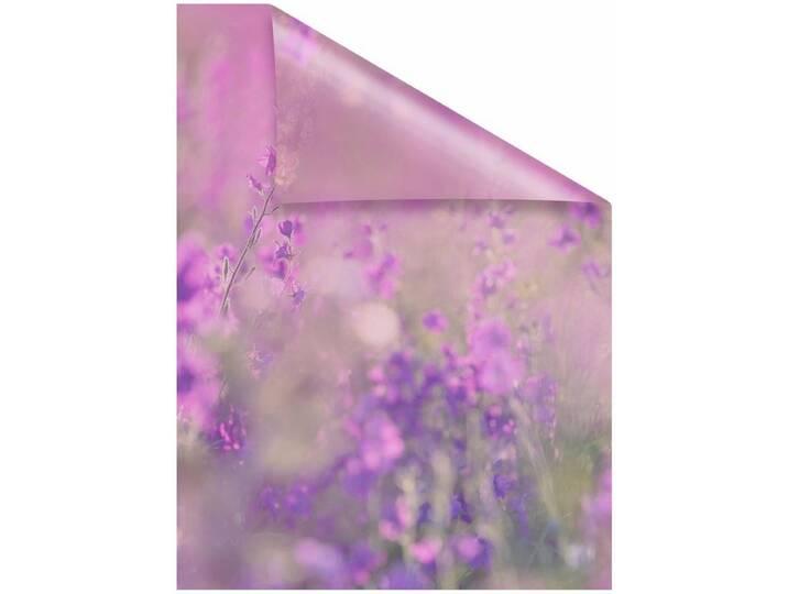 LICHTBLICK Fensterfolie, »Blumenwiese«,, hochwe...