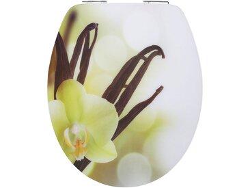 WC-Sitz »Vanilla Cream«, Mit Absenkautomatik, weiß, weiß/bunt